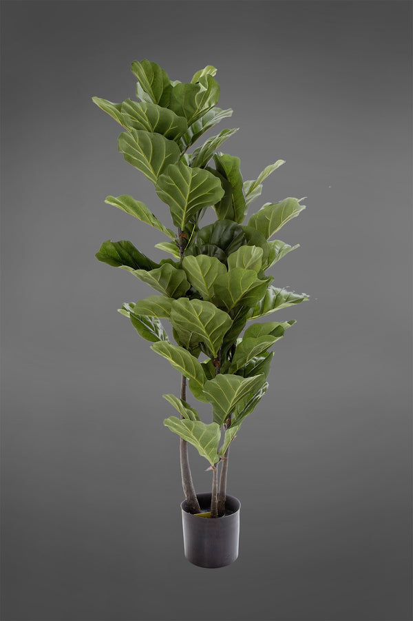 Fiddle Leaf Tree - Green - 1.33m Tall Artificial Tree