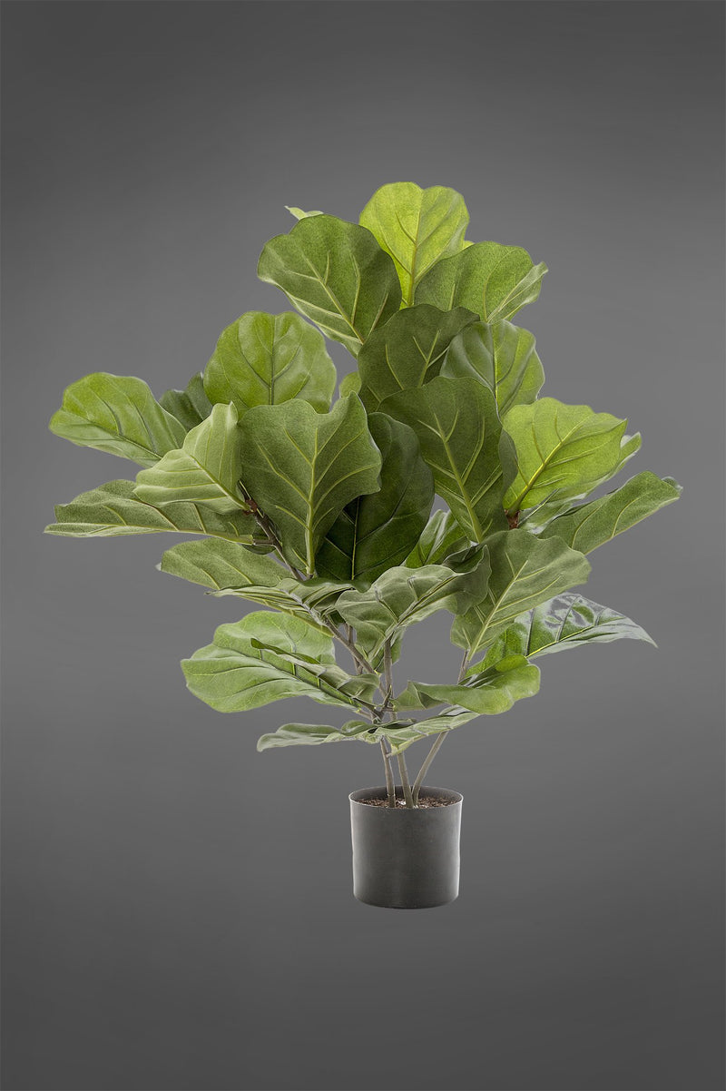 Fiddle Leaf Fig Tree - Green - 65cm Tall Artificial Tree