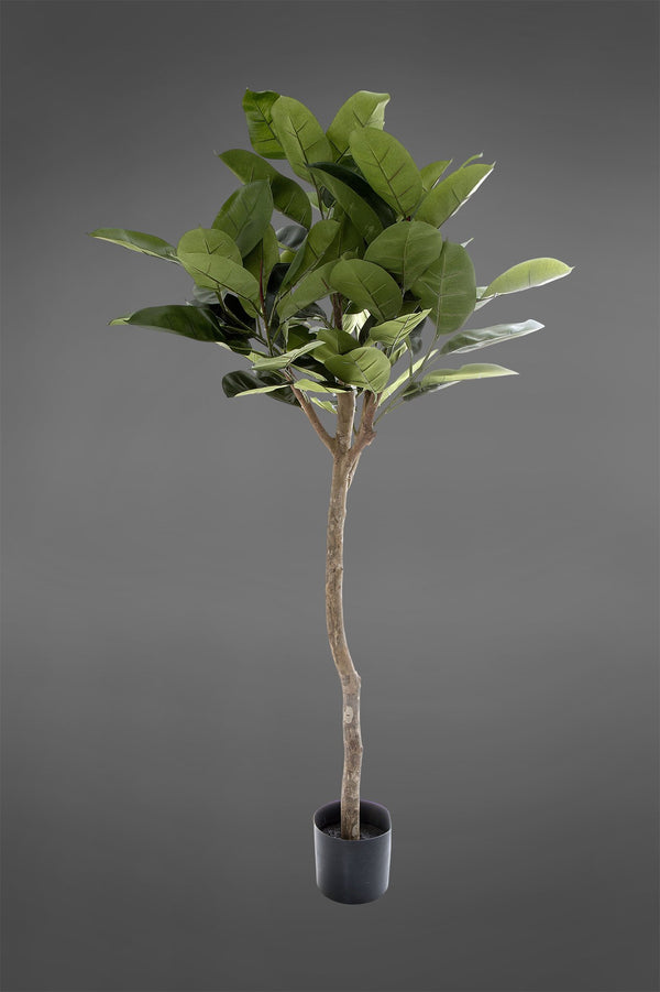 Rubber Plant Tree - Green - 1.2m Tall Artificial Tree