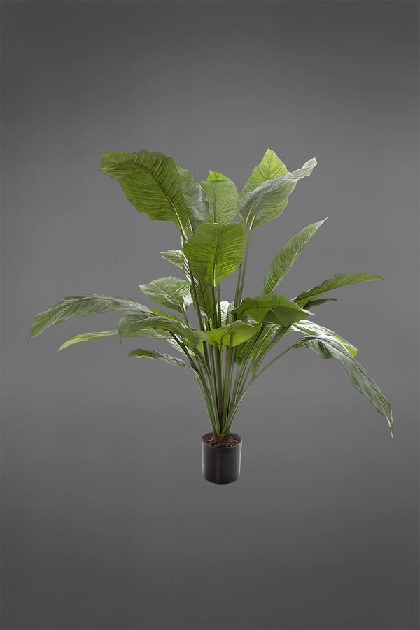 Spathiphyllum - Green - 100cm Tall Artificial Plant