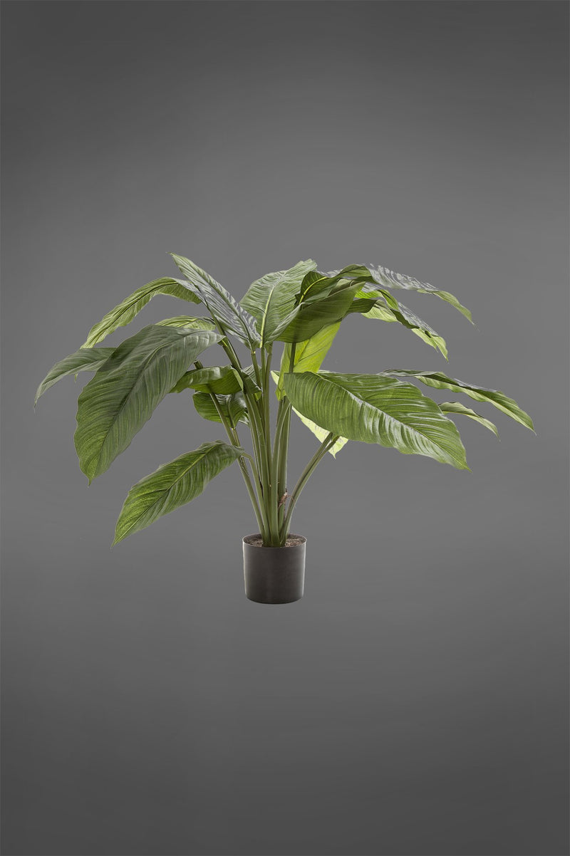 Spathiphyllum - Green - 66cm Tall Artificial Plant