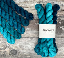 Load image into Gallery viewer, Mini Skein Set- Earth Day
