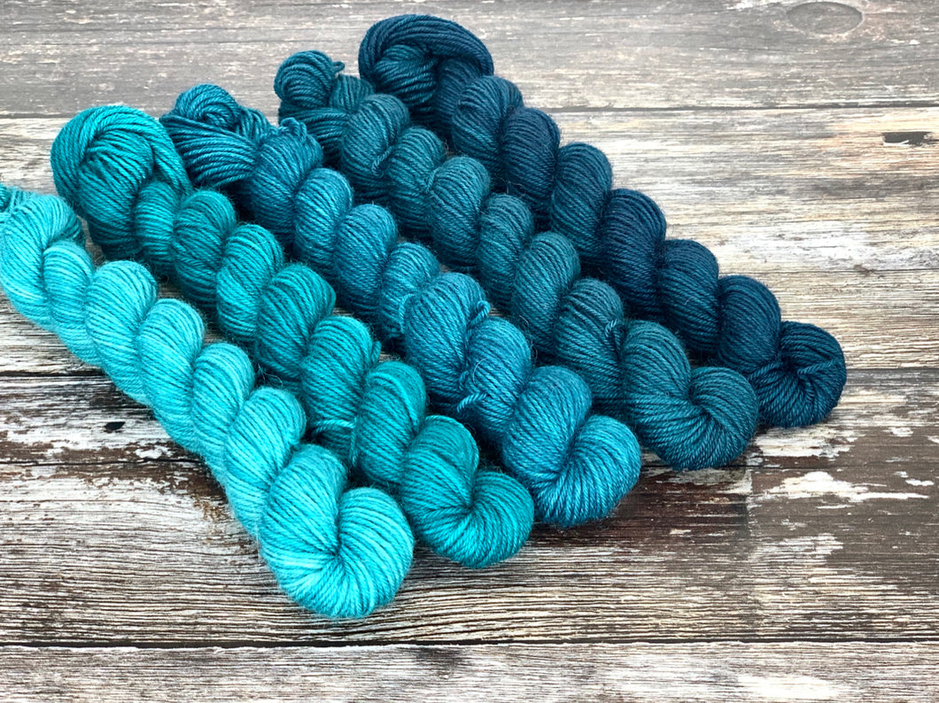 Mini Skein Set- Earth Day