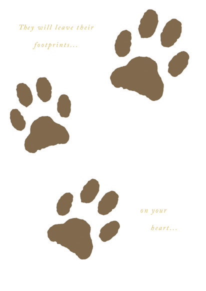 Paw prints- Sympathy loss of pet greeting card. Retail: $2.99. Unit pack: 6. Inside: A best friend, a companion....