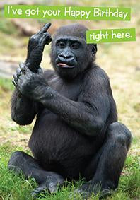 Quirky Critters- Gorilla- General Birthday. Retail $2.99 Unit Quantity 6. Inside: Hope you enjoy it!