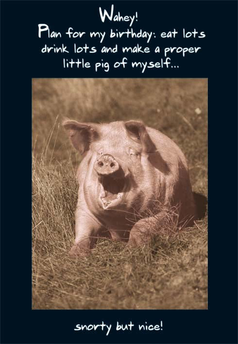 Proper little pig- Humor Birthday card from the Pigment collection. Unit quantity: 6. Retail: $2.99. Inside: Happy Birthday.