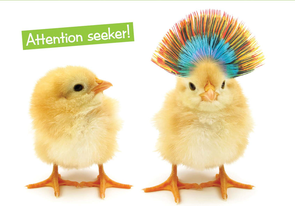 Quirky Critters- Chicks- General Birthday. Retail $2.99 Unit Quantity 6. Inside: You'd think it was your birthday or something.