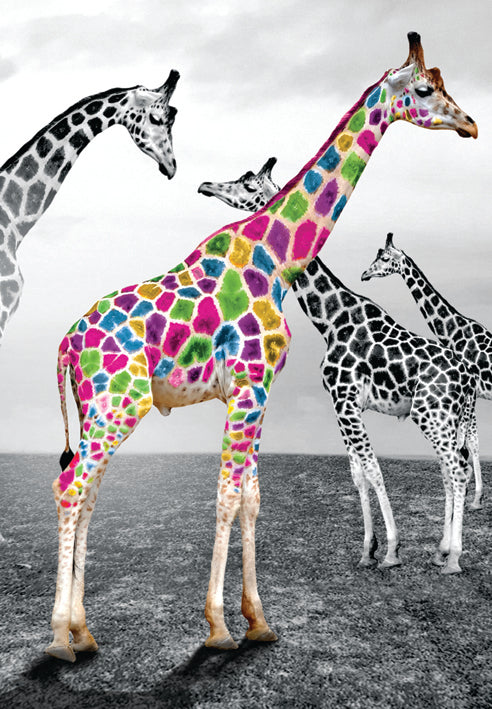 Giraffe blank card from the Vivid Jungle collection. Retail $2.99. Unit Quantity 6. Inside: BLANK