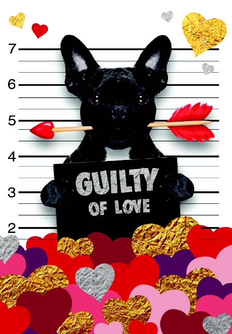 Guilty of love- Husband- Valentine's greeting card. Unit Quantity: 3. Retail: $2.99. Inside:  I can't stop loving you! Happy Valentine's Day.