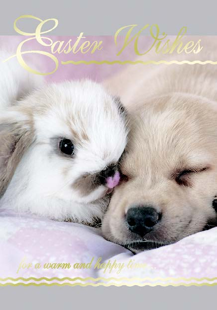 Dog and rabbit- General Easter greeting card. Retail: $2.99. Unit pack: 3. Inside: Filled with lots of love. Have a happy Easter!