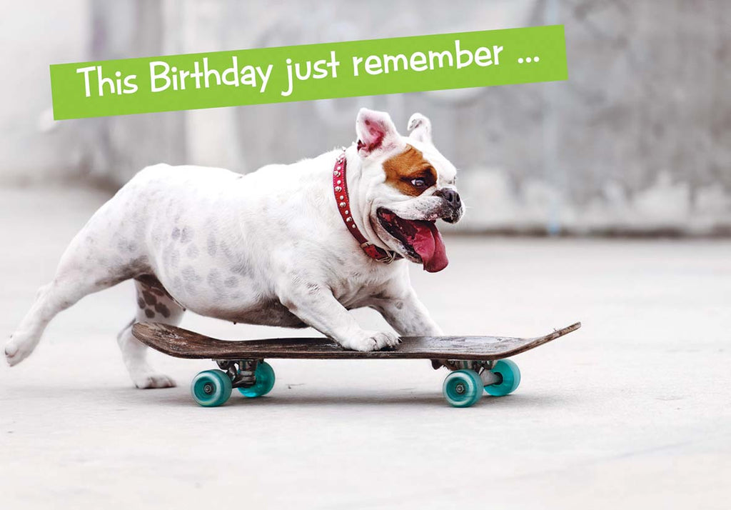 Quirky Critters- dog on skateboard- General Birthday. Retail $2.99 Unit Quantity 6. Inside: Now that you're over the hill you'll begin to pick up speed.