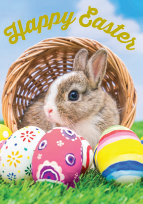 Bunny in basket- General Easter greeting card. Retail: $2.99. Unit pack: 3. Inside: May this Easter Sunday inspire new hope...