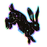 Holographic Galaxy Rabbit Sticker