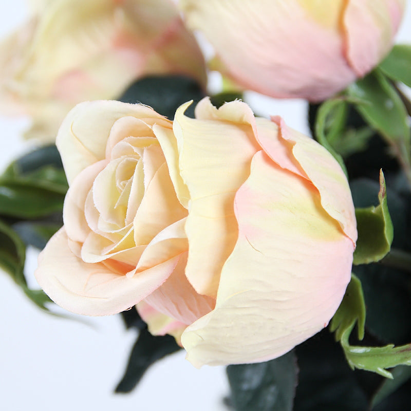 "Silk Champagne Color Single Rose Bloom Stem 26"" Tall"