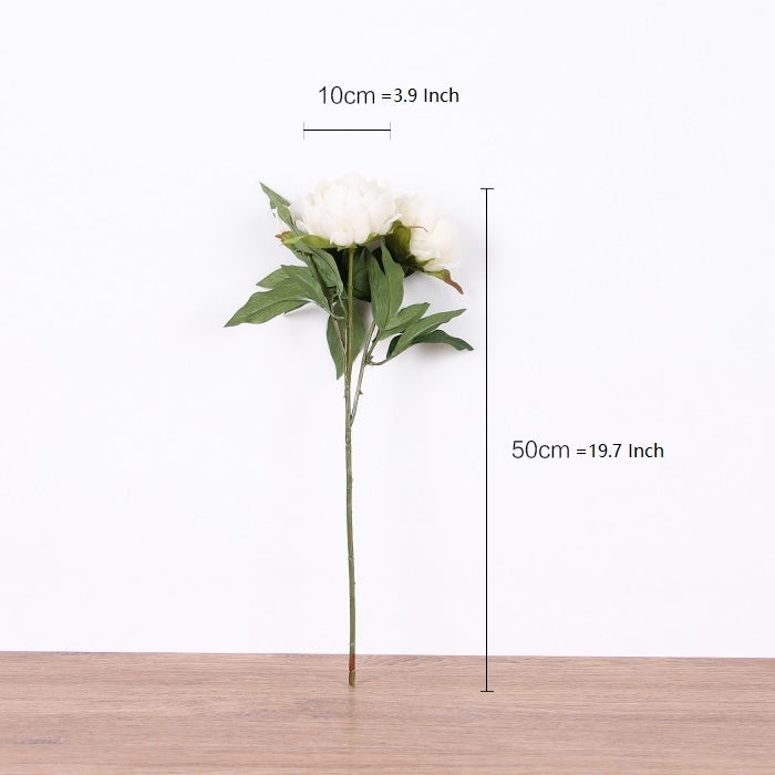 "Silk Peony Stem in White 20"" Tall"