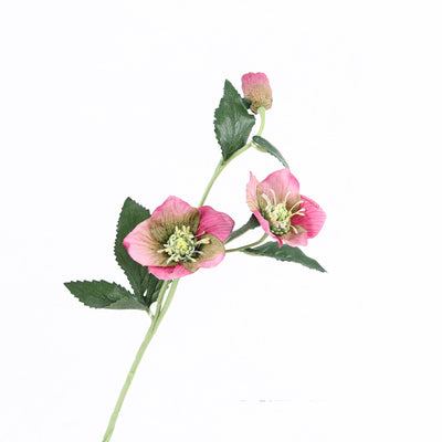 "Silk Pink Christmas Flower Stem 22"" Tall"