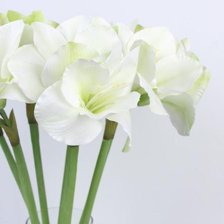 "Clivia Orchid Stem in White 30"" Tall"