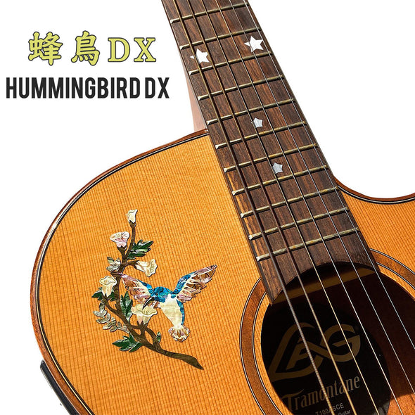Humming Bird DX
