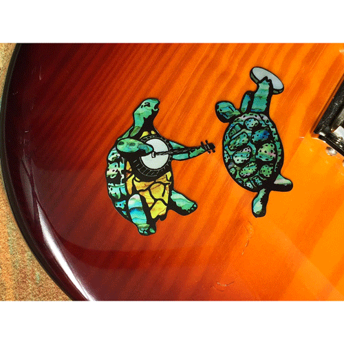 Dancing Turtles