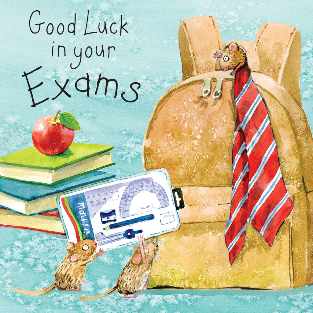 Image of Twizler Cards Fizzle & Pop Good luck in your Exams