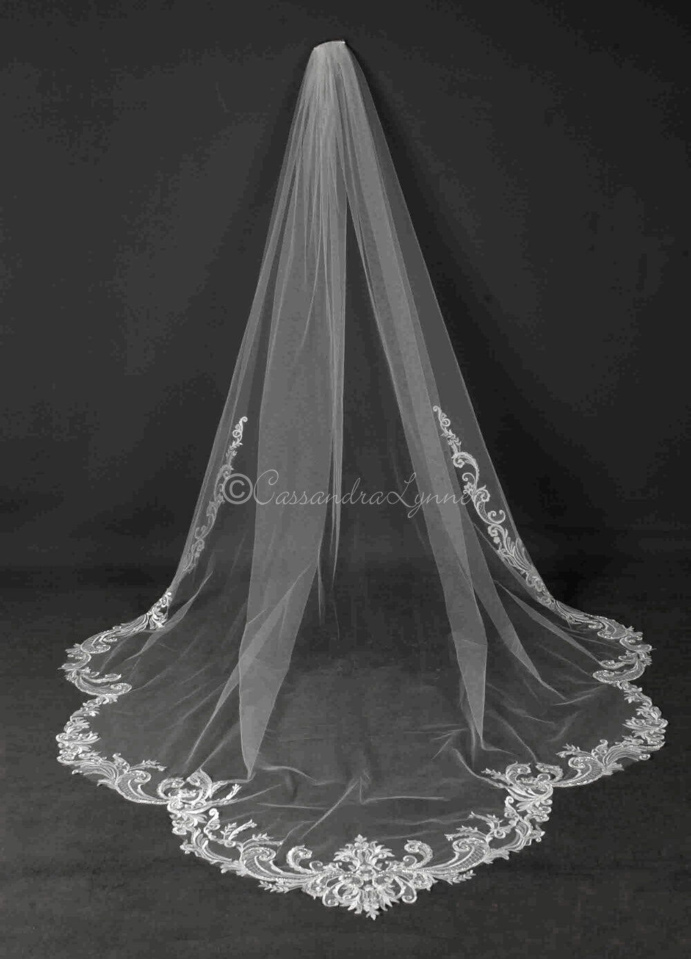 Cathedral Veil with Swirling Beaded Lace