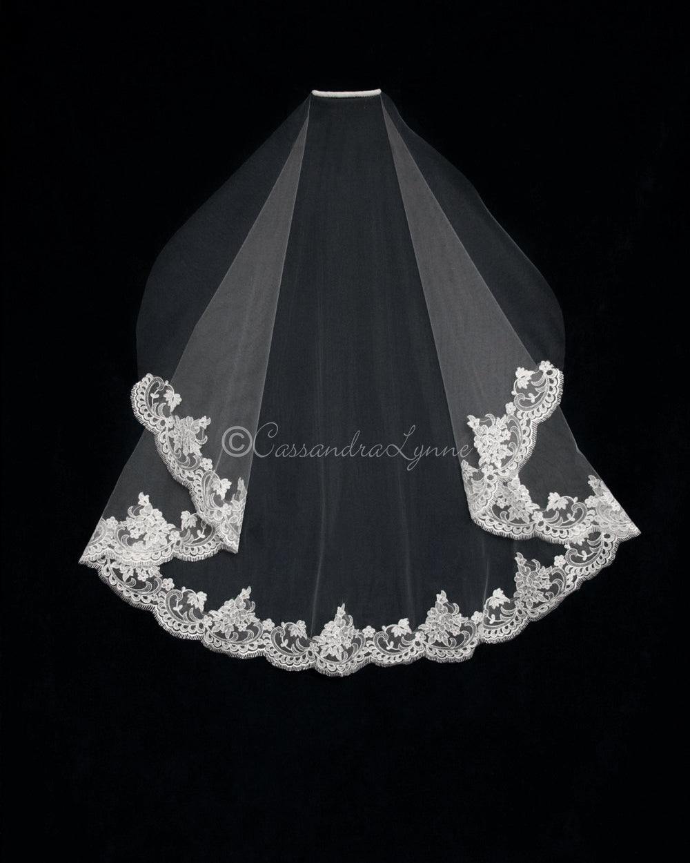 Sheer Alencon Partial Lace Veil