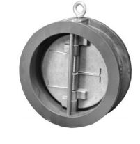 cast iron wafer check valve