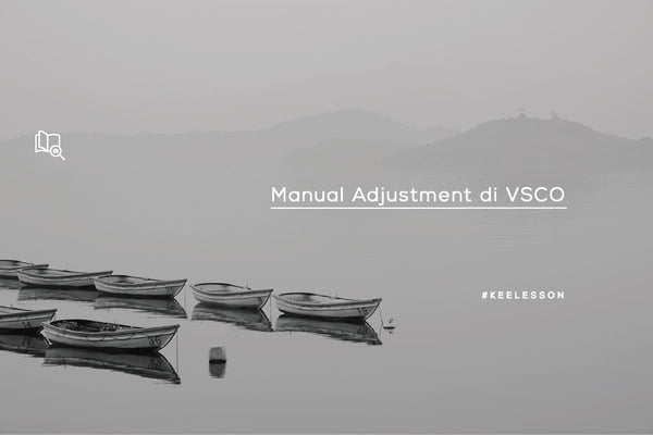 Manual Adjustment di VSCO