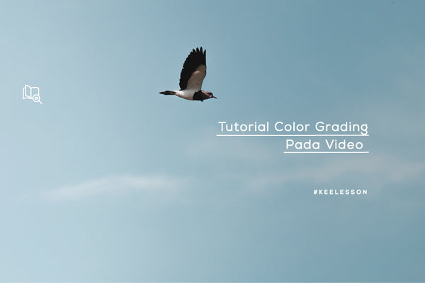 Tutorial Color Grading Pada Video