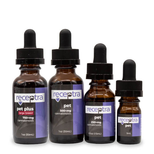 Receptra Pet Hemp CBD Oil