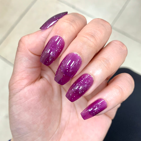 Ready to Ship I Translucent Purple Shimmer  Set