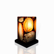 "Handmade Natural Agate Lamp, LED w/ dimmer, 7"" tall w/ wooden base"