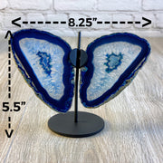 "Brazilian Blue Agate ""Butterfly"" Slices, Metal Stand, 5.5"" Tall and 8.25"" wide (5050-0005)"