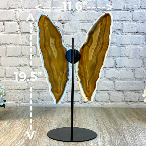 "Natural Brazilian Agate ""Butterfly"" Slices, Metal Stand, 19.5"" Tall and 11.6"" wide (5050-0013)"