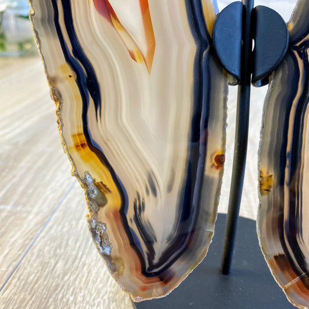 "Natural Brazilian Agate ""Butterfly"" Slices, 7"" Tall and 6.5"" wide (5050-0003)"