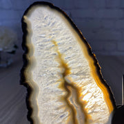 "Natural Brazilian Agate ""Butterfly"" Slices, Metal Stand, 8"" Tall and 7.5"" wide (5050-0010)"