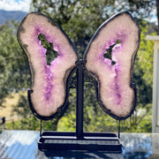 "Large Amethyst Druses ""Butterfly"" on metal base, 26"" tall & 56 lbs (5606-0005)"