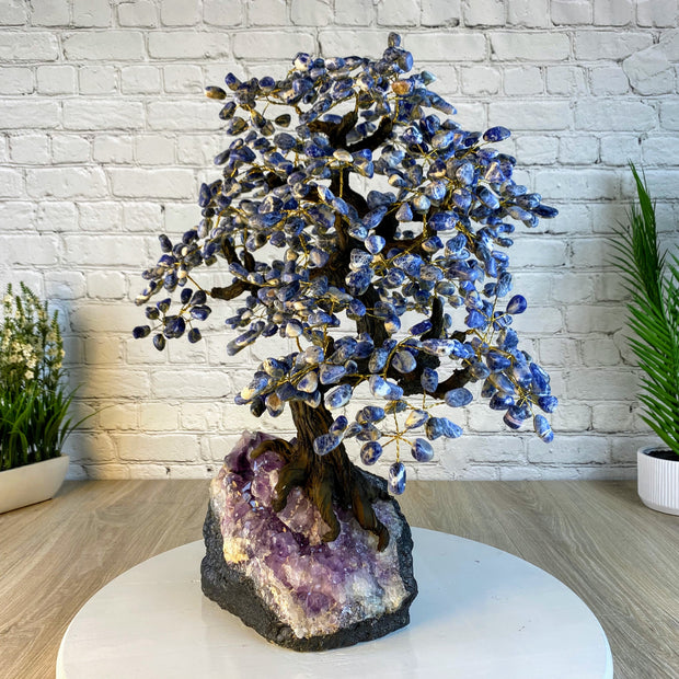 "Large Handmade Gemstone Tree, Sodalite, 25"" tall, 144 branches and 720 gemstones (5407-0021)"