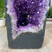 "Gemstone Tree w/ Amethyst base, several options, 8"" tall, 24 branches"
