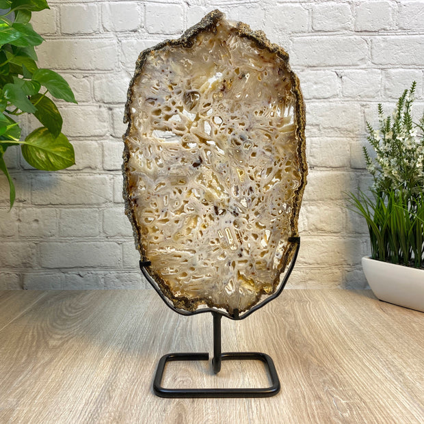 "Natural Brazilian Agate Slice w/ metal stand, 17.6"" Tall and 3.5 lbs (5055-0025)"
