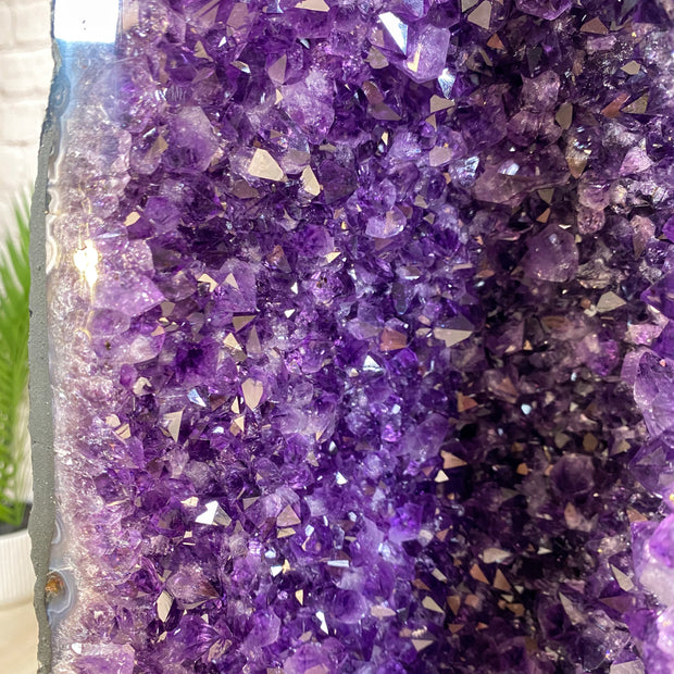 "Extra Quality Large Brazilian Amethyst Cathedral, 25.5"" tall & 74 lbs (5601-0172)"