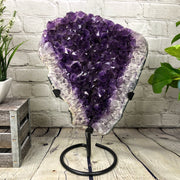 "Large Amethyst Geode Cluster on black metal stand, 31 lbs & 20"" tall (5602-0004)"