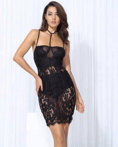 Lily Lace And Mesh Bodycon Party Dress