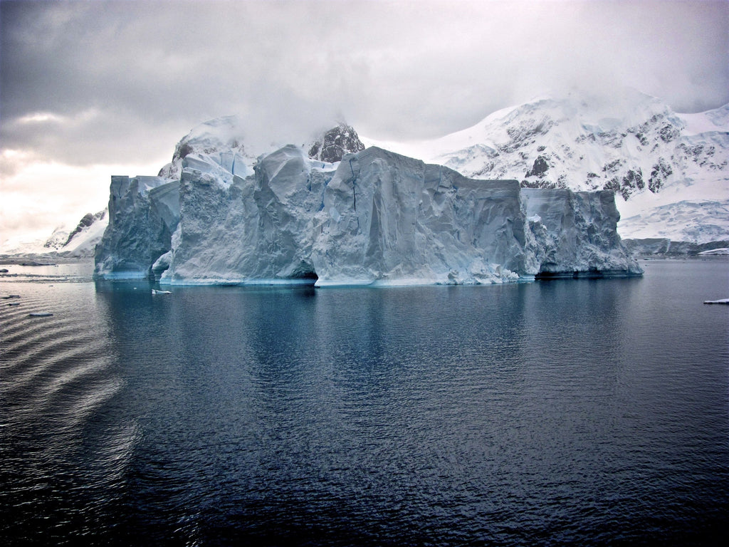 Antarctica contaminated by plastic pollution