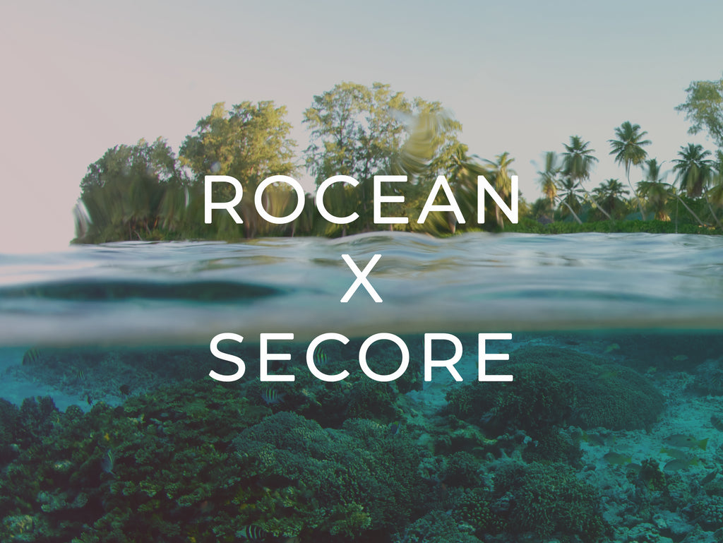 rOcean becomes a SECORE partner to support coral restoration