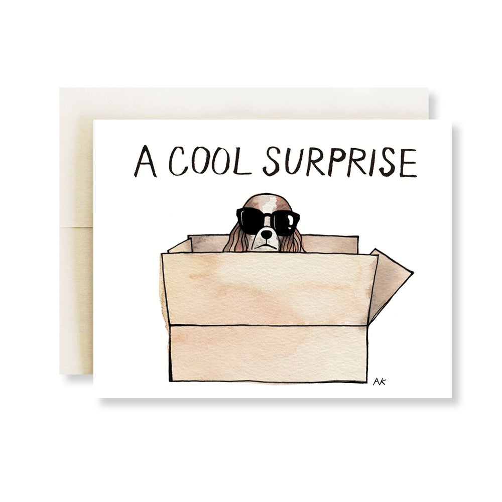 cavalier King Charles spaniel Surprise card