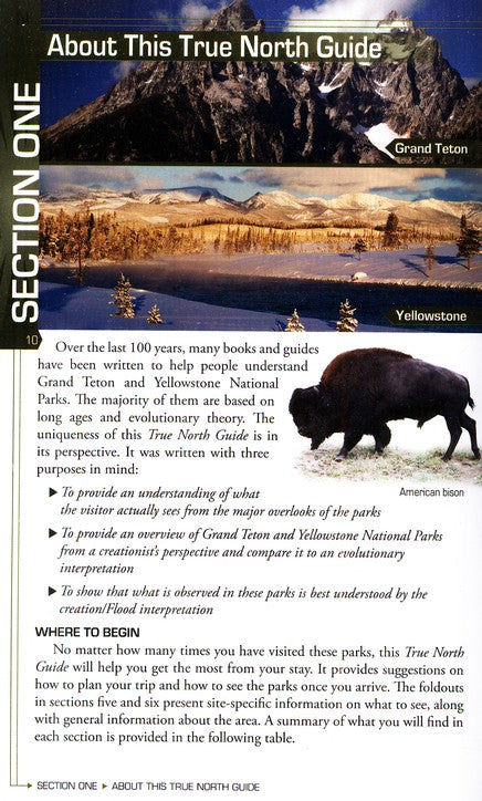 Your Guide To Yellowstone & Grand Teton National Parks