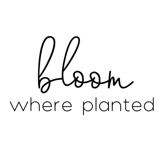 Bloom Where Planted Interchangeable Sign Insert  **INSERT ONLY**
