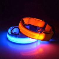 Dog Collar Led Light Night Safe Cats Glowing Collar Dog Lighting Luminous