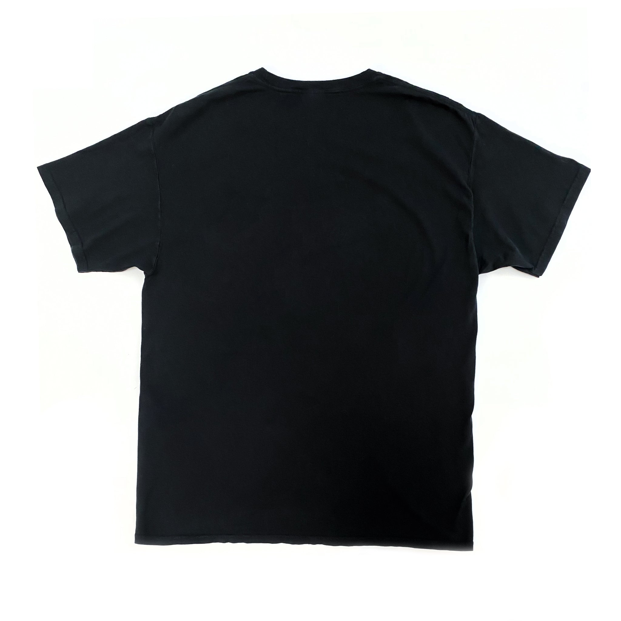 Back view of black short-sleeved t-shirt